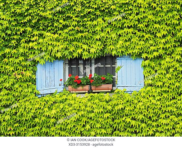 window with blue shutters near Lauzun, Lot-et-Garonne Department, Nouvelle-Aquitaine, France