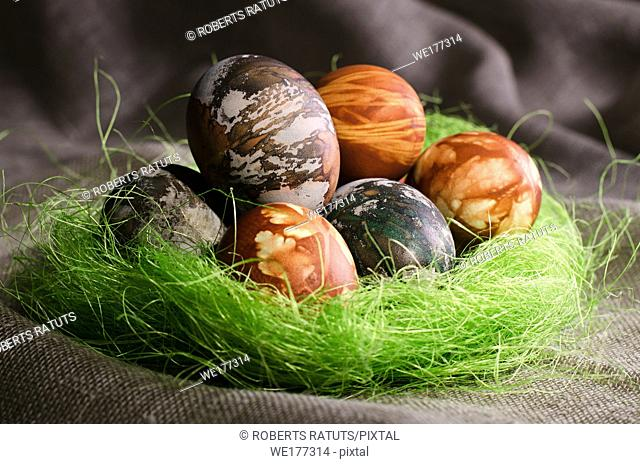 Easter eggs. Painted eggs in the false socket. Speckled eggs in green socket