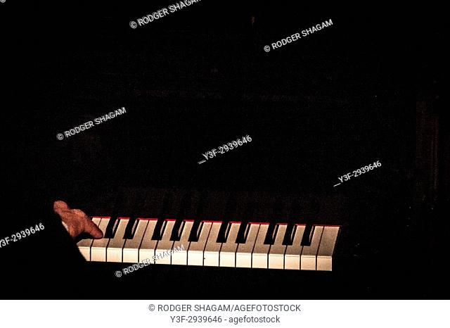 "A pianist ""tickles the ivories"" at a jazz concert"