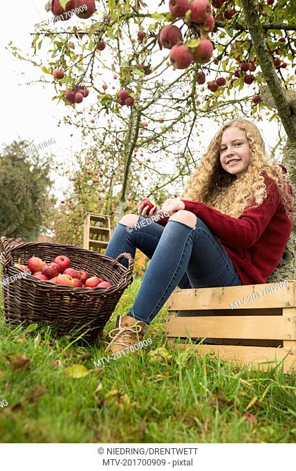 Teenage girl sitting on a crate under an apple tree in an apple orchard farm, Bavaria, Germany