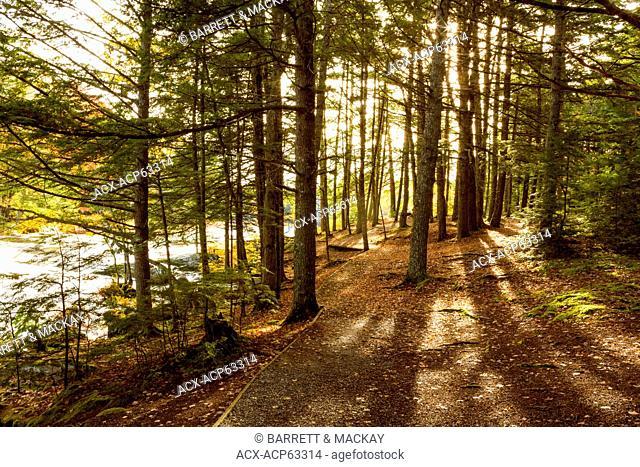 Mills Falls, Mersey River, Kejimkujik National Park, Nova Scotia, Canada