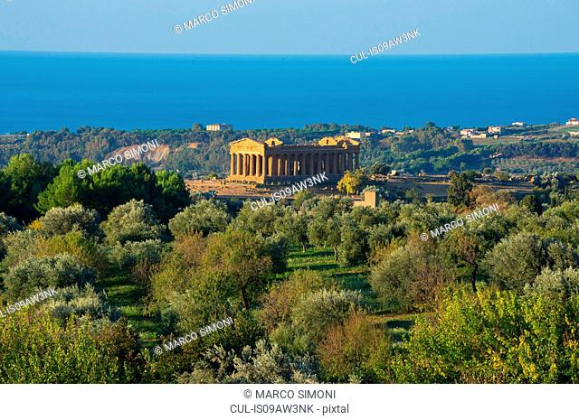 Elevated view of the Temple of Concordia, Valley of the Temples, Agrigento, Sicily, Italy