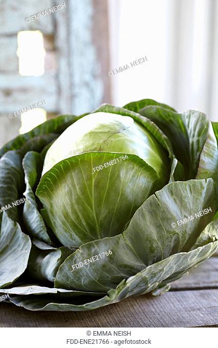 Fresh White Cabbage On Wooden Box