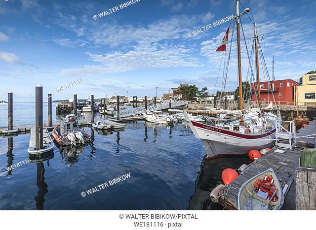 USA, New England, Massachusetts, Cape Ann, Gloucester, Gloucester Schooner Festival, schooners, morning