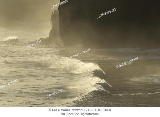 Wave breaking on the coast at Pololu Valley, North Kohala, Big Island of Hawaii