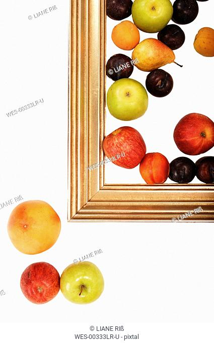 Fruits in picture frame