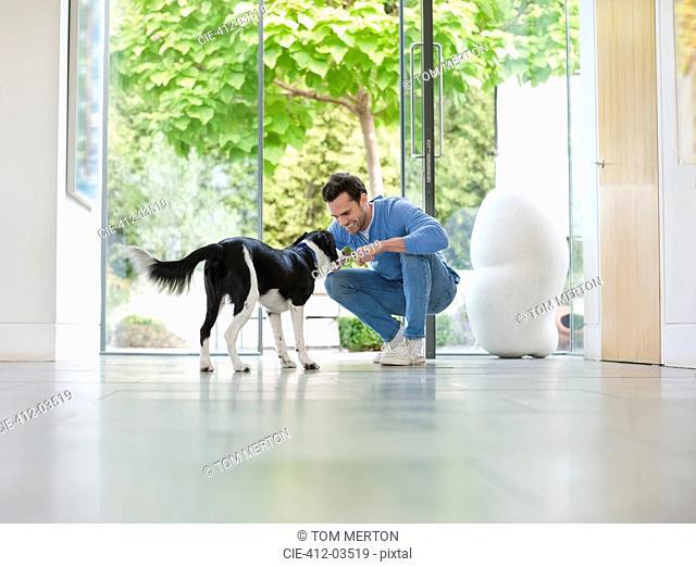 Smiling man petting dog in kitchen