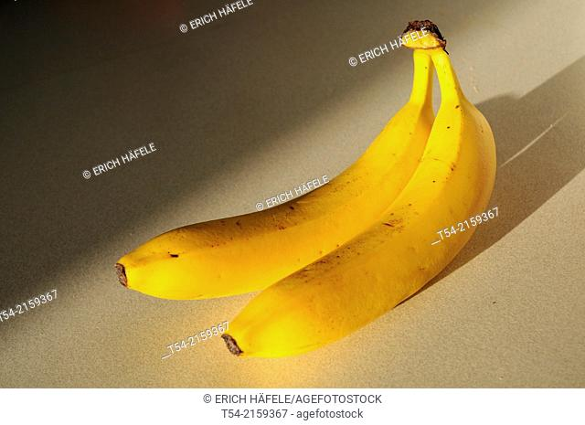 Two yellow bananas in the light