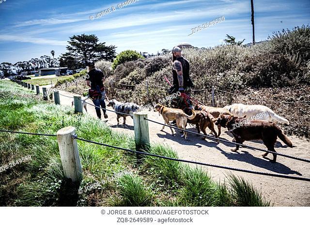 People walking in San Francisco bay trail, Crissy Field, California