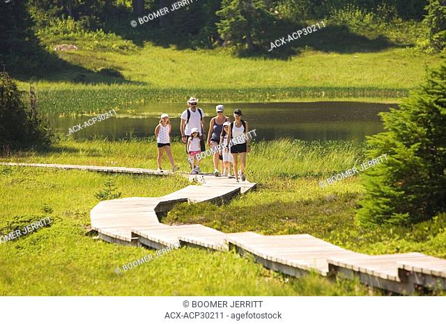 Mount Washington and Paradise Meadows is a popular hiking destination. Mount Washington, The Comox Valley, Vancouver Island, British Columbia, Canada