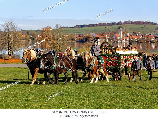 Carriage at the Leonhardi procession to Froschhausen, Murnau, behind the Riegsee, Pfaffenwinkel region, Upper Bavaria, Bavaria, Germany