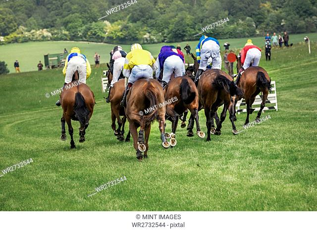 Group of riders on racehorses racing on a course, during a steeplechase
