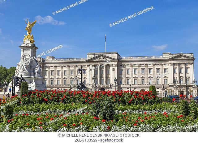 Summer flowers in front of Buckingham Palace in London England headquarters of the monarch of the United Kingdom