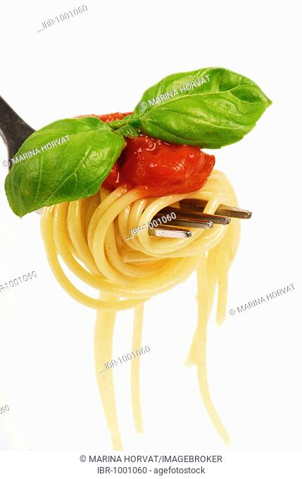 Spaghetti with basil leaves and tomato sauce on a fork