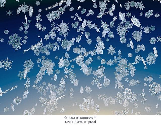 Snowflakes falling, illustration