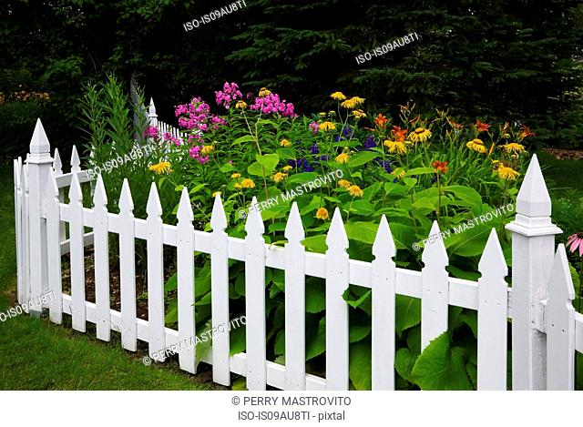 Orange, yellow and purple flowers surrounded by white picket fence