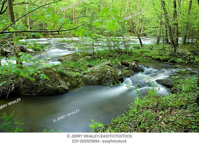 River, Tremont area