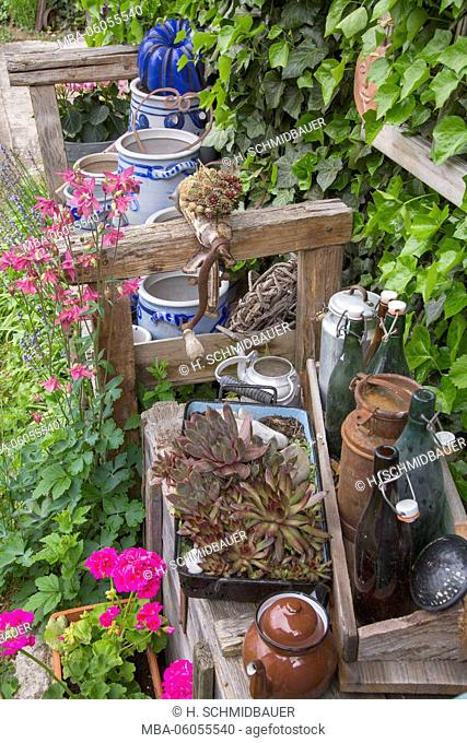 Old pots and bowls with plants in the garden