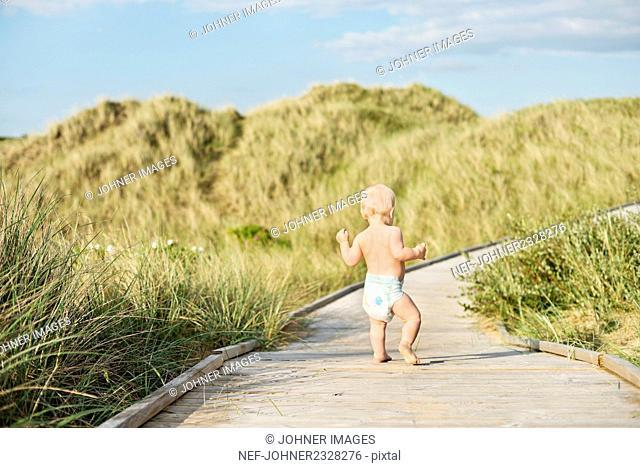 Toddler walking on boardwalk