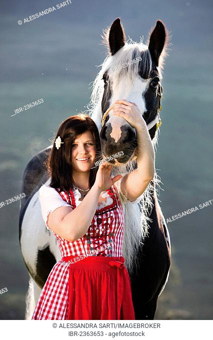 Young woman wearing a dirndl cuddling with a Gypsy Vanner or Tinker horse, pinto, black and white, North Tyrol, Austria, Europe