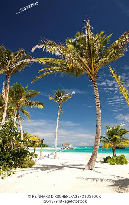 Beach of Maldive Island Kandooma, South Male Atoll, Maldives