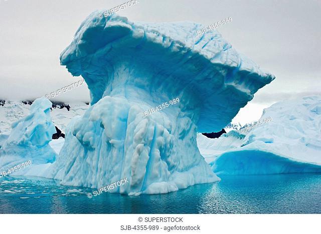 Mushroom-Shaped Iceberg in Antarctica's Iceberg Graveyard