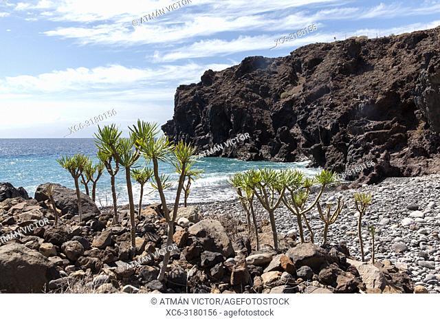 Isorana cliff. Tenerife, Canary Islands, Spain