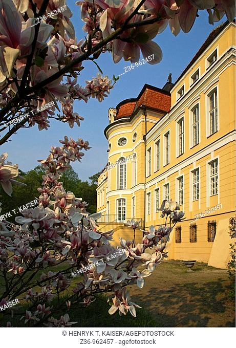 Rogalin Palace at spring, Wielkopolska, Poland