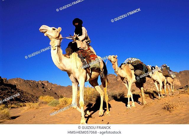 Algeria, Sahara, camel trek to Essendilene in the Tassili N'Ajjer