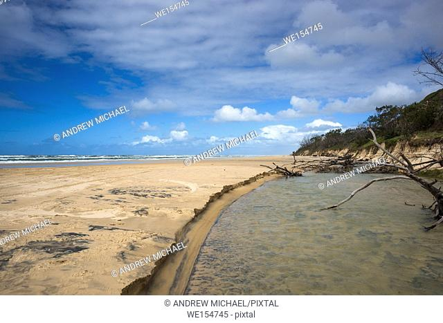 River Eli Creek, Great Sandy National Park, Fraser Island, Queensland, Australia