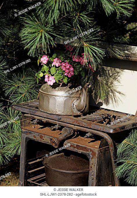 Gardens: An old cast aluminum tea kettle serves as flower pot, sits on an old rusty iron stove. Part of a theme garden using old household items as props