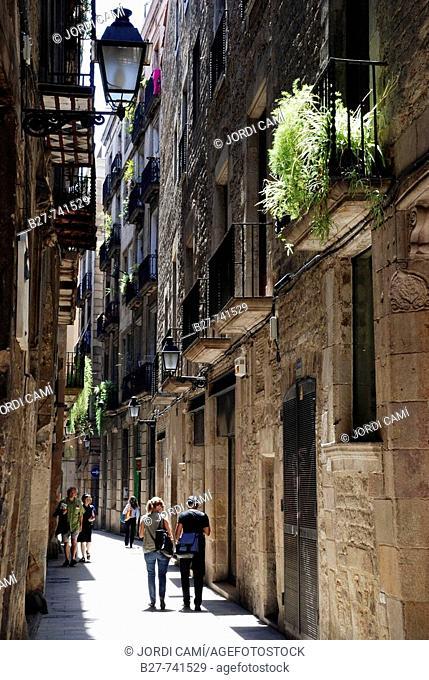 Carrer des Lledó, Gothic quarter, Barcelona, Catalonia, Spain