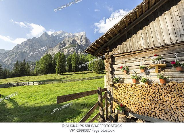 Wood hut, Malga Foresta, Val Foresta, Dolomites, province of Bolzano, South Tyrol, Italy