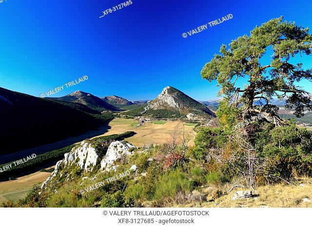 Caille, Prealpes d'Azur, 06, Alpes-Maritimes, Cote d'azur, PACA,