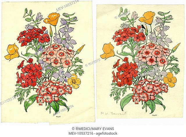 Two Wildflower studies
