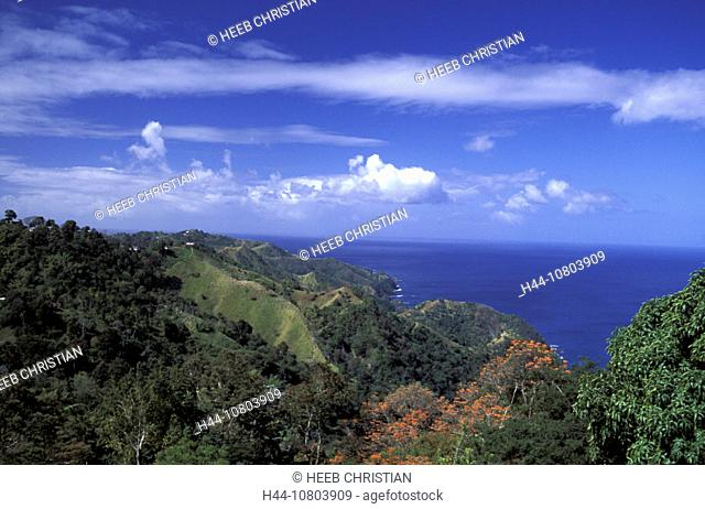 Castara Bay, coast, mountains, overview, scenery, landscape, sea, Caribbean, Tobago, wood