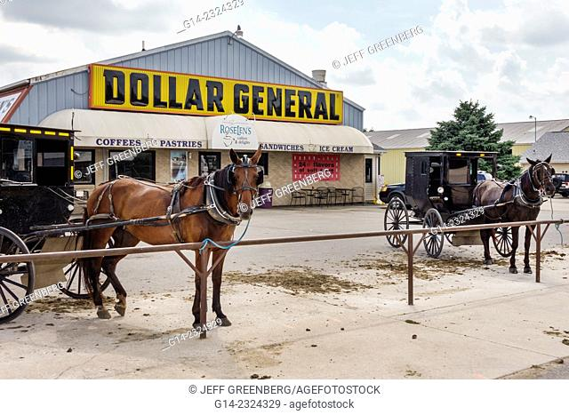Illinois, Arthur, Dollar General Store, parking lot, Amish, buggy, horse, parked, hitching post