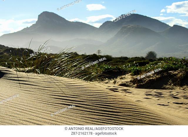 Dunes, Calblanque Regional Park, Cartagena, Murcia, Spain