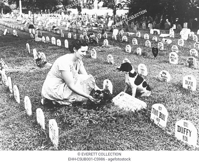 Pet cemetery where more than 3,000 animals, including dogs, cats, birds, and monkeys are buried. Aug. 1958 at Florissant, St. Louis County, Missouri