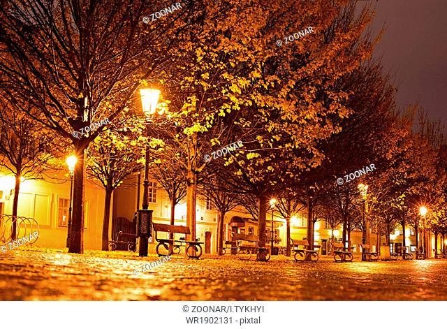 Prague park at night