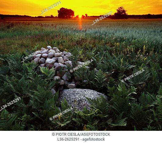 Sunset. Podlasie region. Eastern Poland