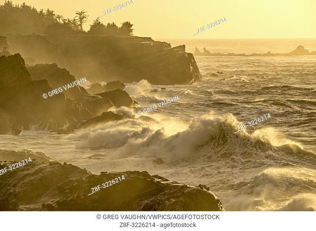 Waves crashing on the rocks at Shore Acres State Park, southern Oregon coast