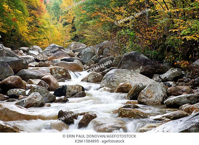 Zealand River in the White Mountains, New Hampshire USA during the autumn months  This area was once part of the Zealand Valley Railroad