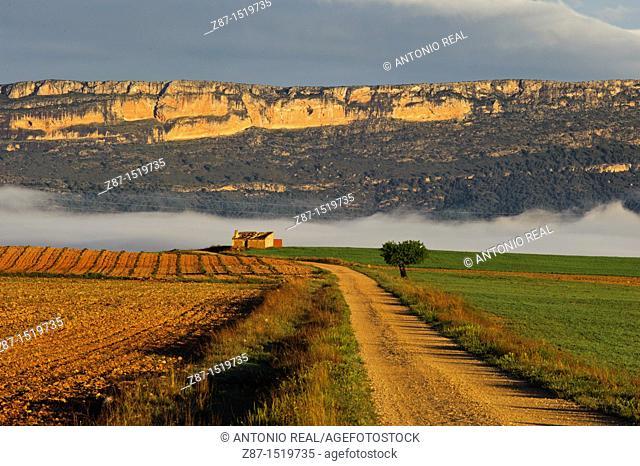 Country road, Sierra de El Mugrón, Almansa, Albacete province, Castilla-La Mancha, Spain