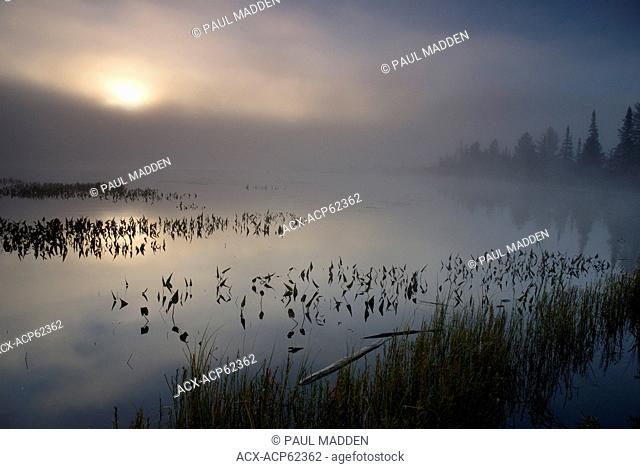 Sunrise on Lake of Two Rivers, Algonquin Park, Ontario
