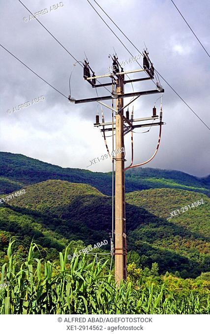 Electric pole, Les Planes d'Hostoles, La Garrotxa, Catalonia, Spain