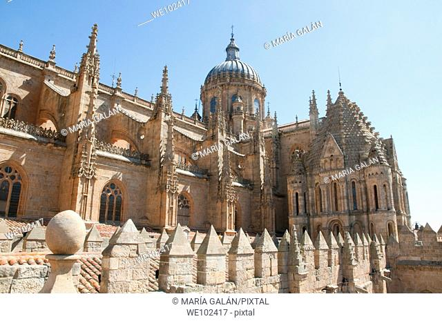 Cathedral viewed from its terrace. Salamanca, Castilla León, Spain