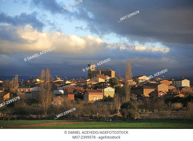 Azofra village, Camino de Santiago, Rioja wine region, Spain, Europe