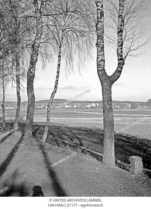 Auf der Straße zwischen Groß Garten und Kutten in Masuren, Ostpreußen, 1930er Jahre. On street between Gross Garten and Kutten in Masuira, East Prussia, 1930s