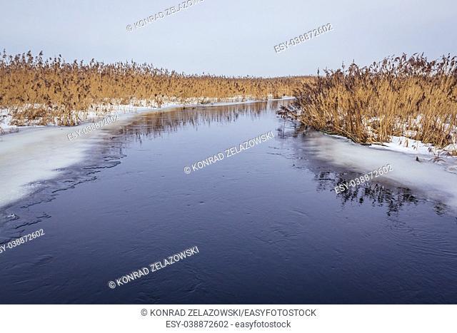 Narew River in Waniewo village, Wysokie Mazowieckie County in Podlaskie Voivodeship of northeastern Poland